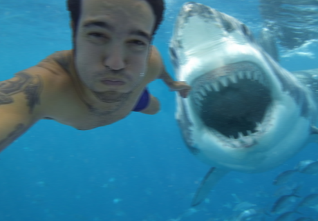 Man Takes Selfie Moments Before Deadly Shark Attack