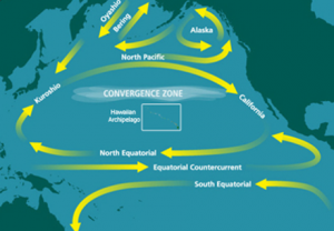 The Patch is created in the gyre of the North Pacific Subtropical Convergence Zone, one of the five major oceanic gyres.