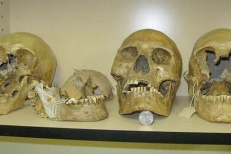 Smithsonian Admits to Destruction of Thousands of Giant Human Skeletons in Early 1900′s Skull-giant-460x307