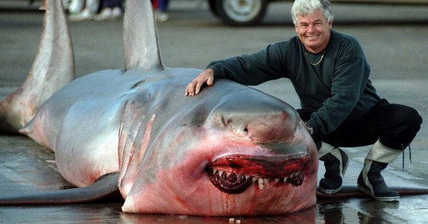 Fisherman Captures 3000 Pound Great White Shark In Great Lakes