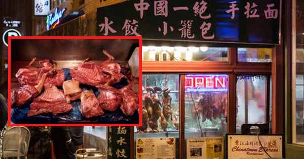 Chinese restaurant accused of stealing and cooking dozens of