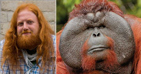 Images - Chimp redhead girl